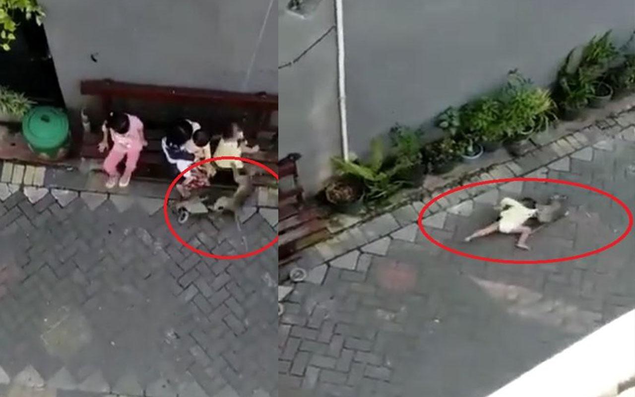 İnanılmaz olay! Maymun çocuk kaçırdı elinden zor aldılar