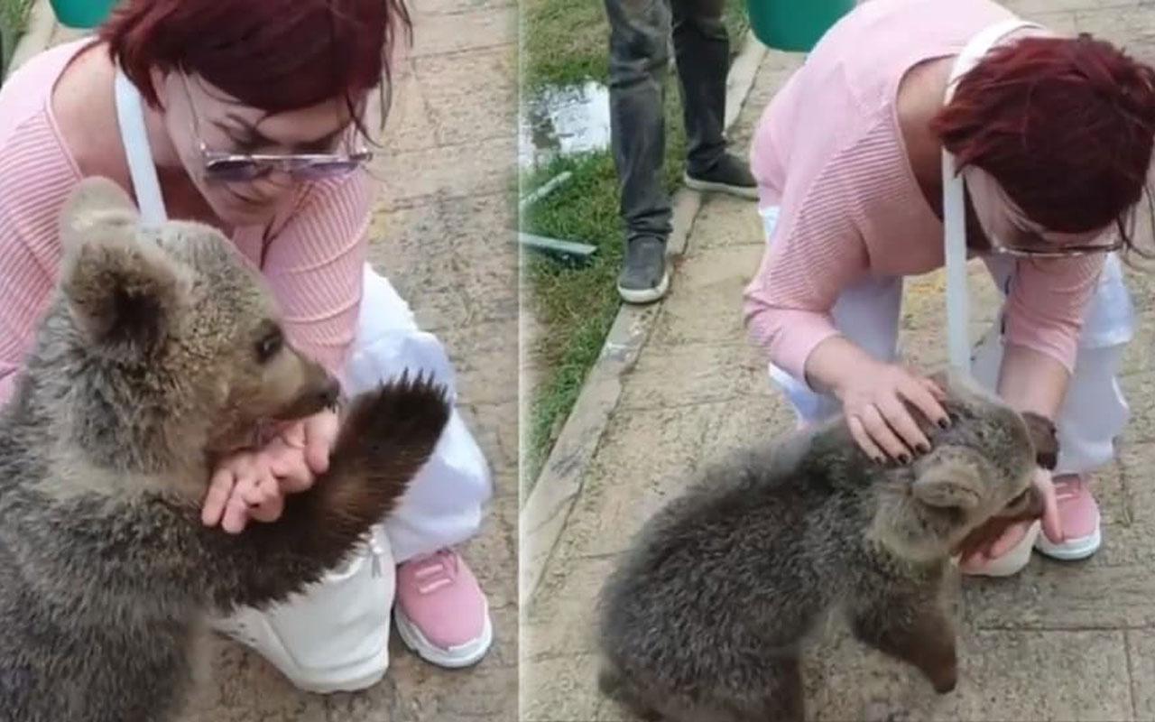 Emel Müftüoğlu ayı saldırısına uğradı! O anları sosyal medyada paylaştı