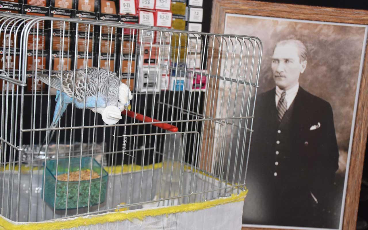 İzmir'de muhabbet kuşu 'Atatürk'ü çok seviyorum' diyor