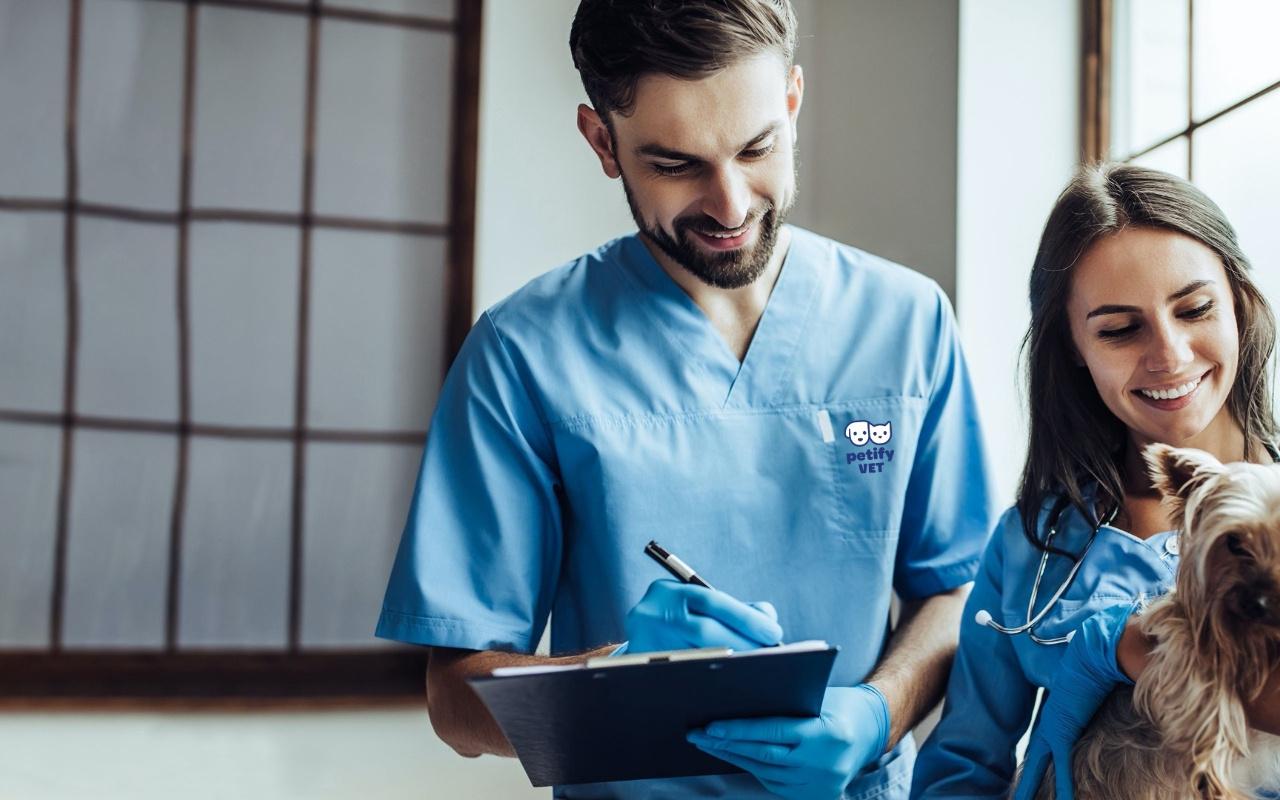 Petify, yeni klinik yönetim sistemi PetifyVet'i piyasaya sürdü