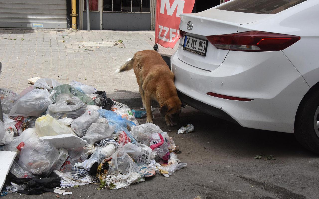 İzmir çöplüğe döndü! 'Her yer leş gibi çöp kokuyor, belediye 2 gündür çöpleri toplamıyor'