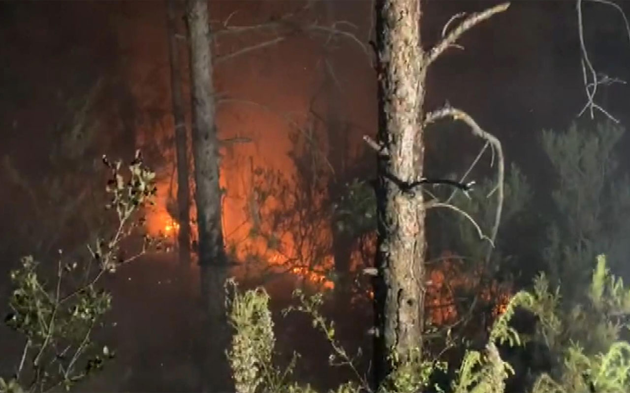 İstanbul Aydos Ormanları'nda yangın