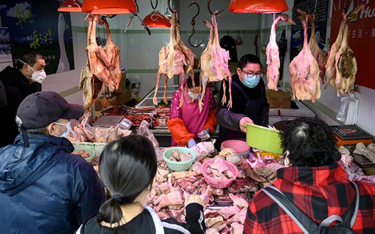 Çin'de vahşi hayvan avlamak ve yemek de yasaklandı