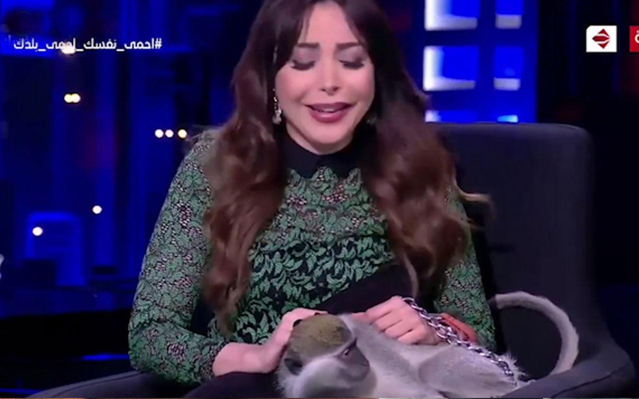 Mısırlı sunucuya canlı yayında maymun saldırdı!