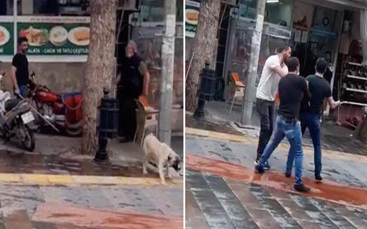 Sosyal medyada tepki çeken görüntü! Köpeği fırça sapıyla dövdü
