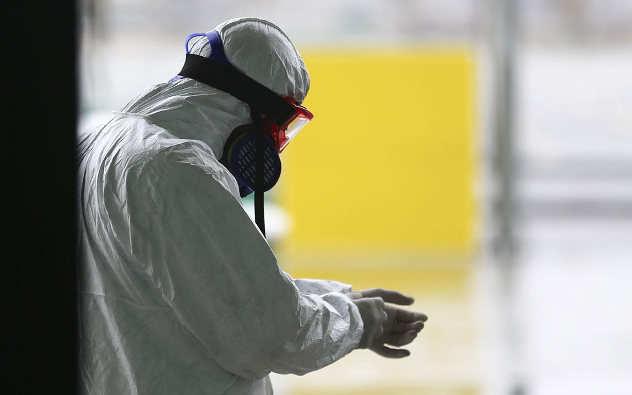 Çin'de 1 Güney Kore'de 49 yeni Kovid-19 vakası tespit edildi