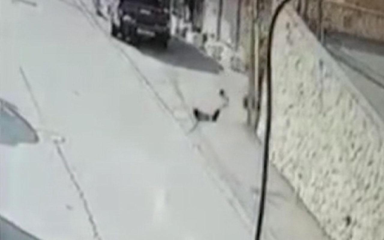 Filistin'de 6 metre yükseklikten düşen çocuk ağır yaralandı