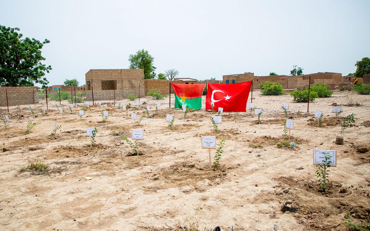 İDDEF'ten fidan projesi! Afrika'da ihtiyaç duyulan bölgelere fidan dikiliyor