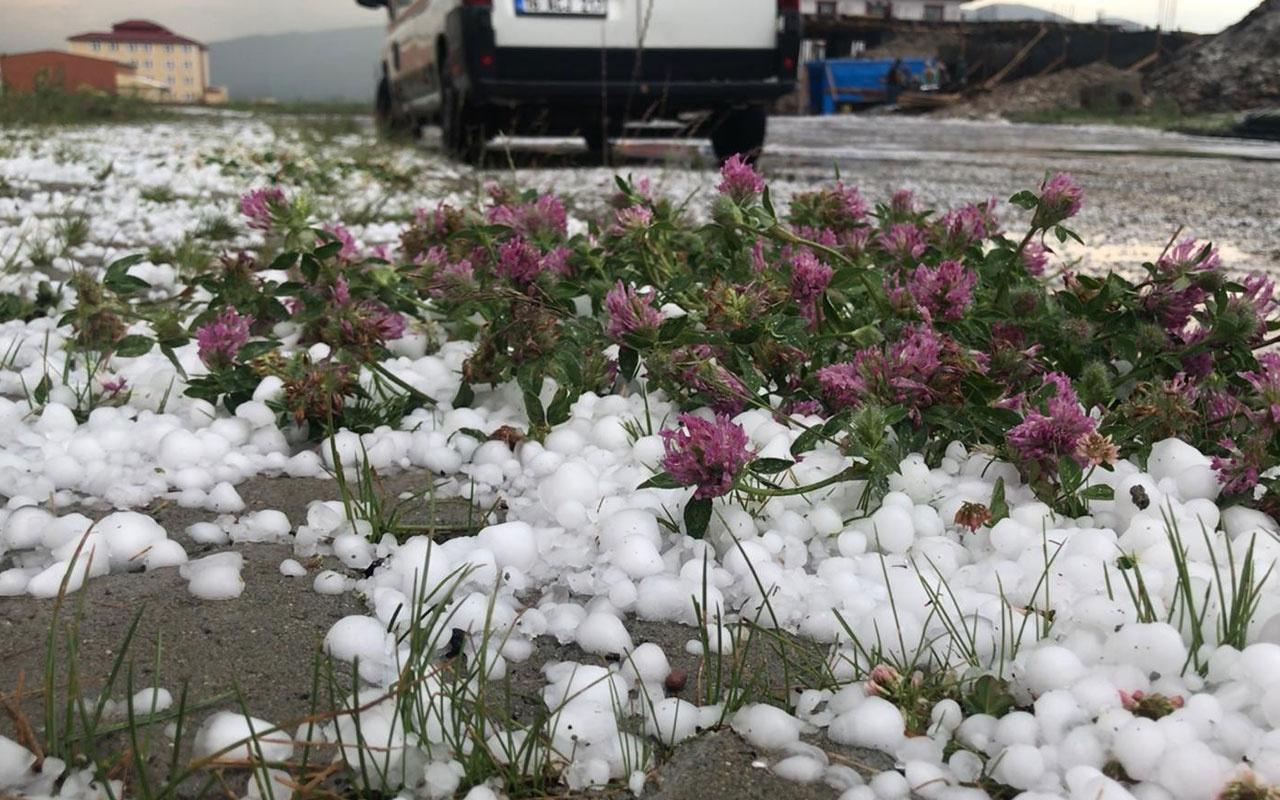 Kars Sarıkamış'ta ceviz büyüklüğünde dolu yağdı! Zor anlar yaşattı