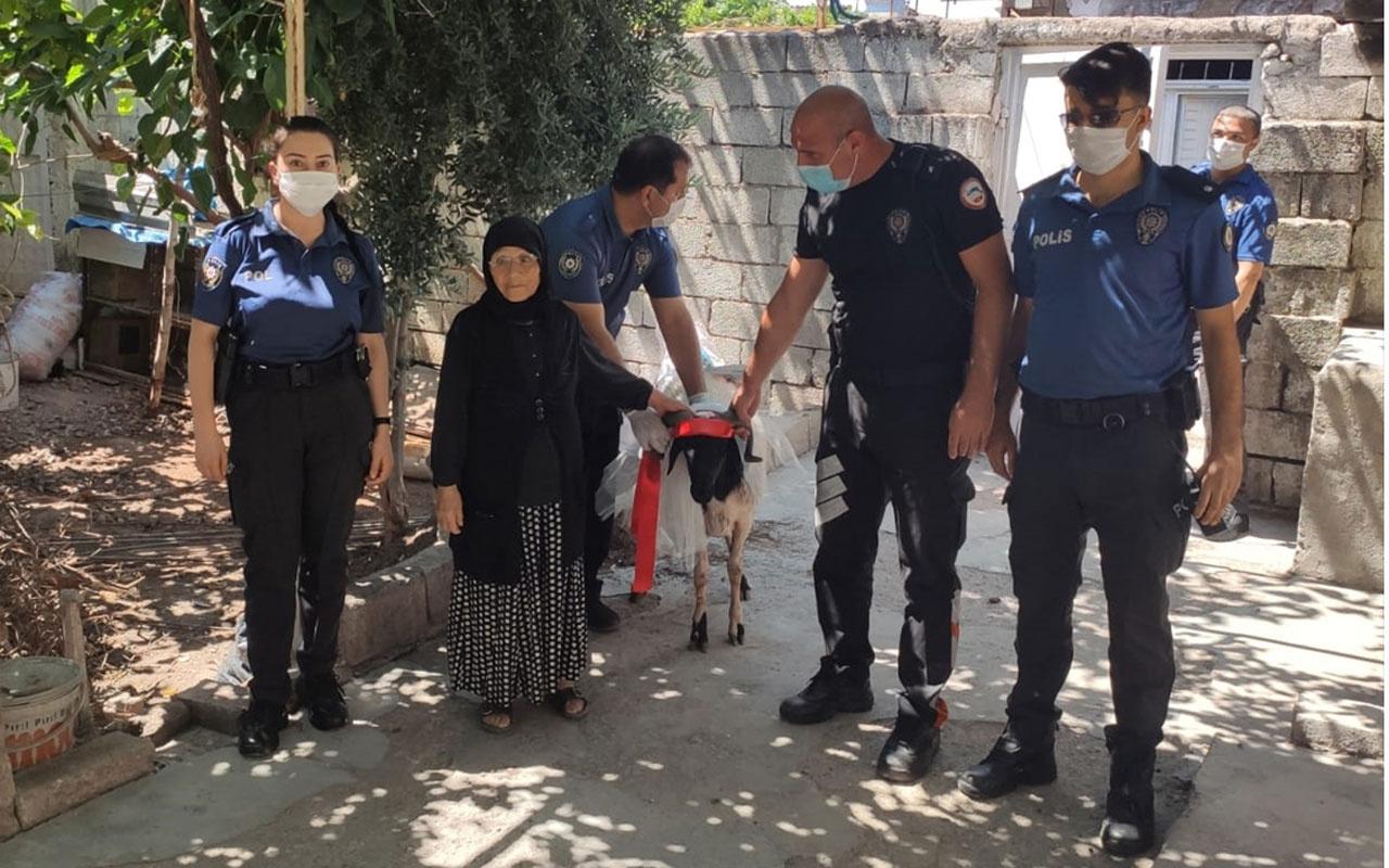 Kurban için biriktirdiği parayı kaybeden Rahme nineye polisler kurbanlık aldı