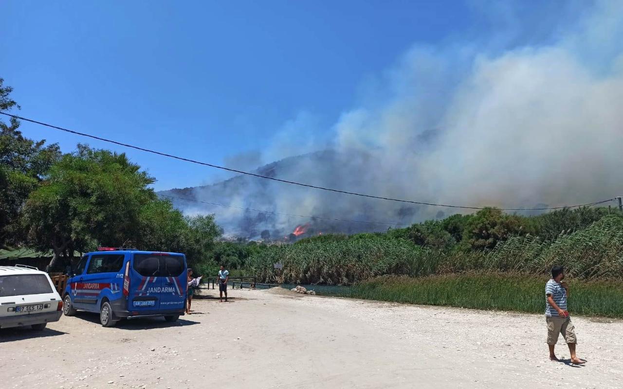 İzmir ve Muğla'da peş peşe korkutan orman yangınları