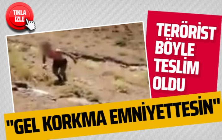 Milli Savunma Bakanlığı 'o anları' paylaştı! Terörist böyle teslim oldu