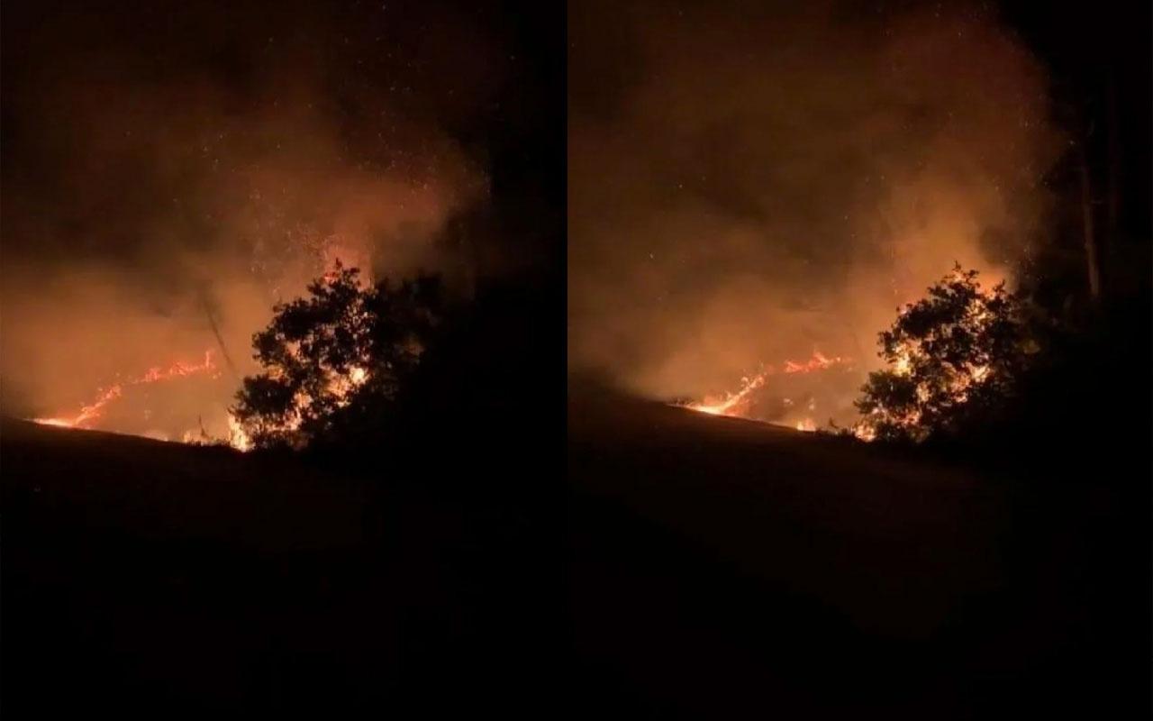 İstanbul Sarıyer'de orman yangını çıktı