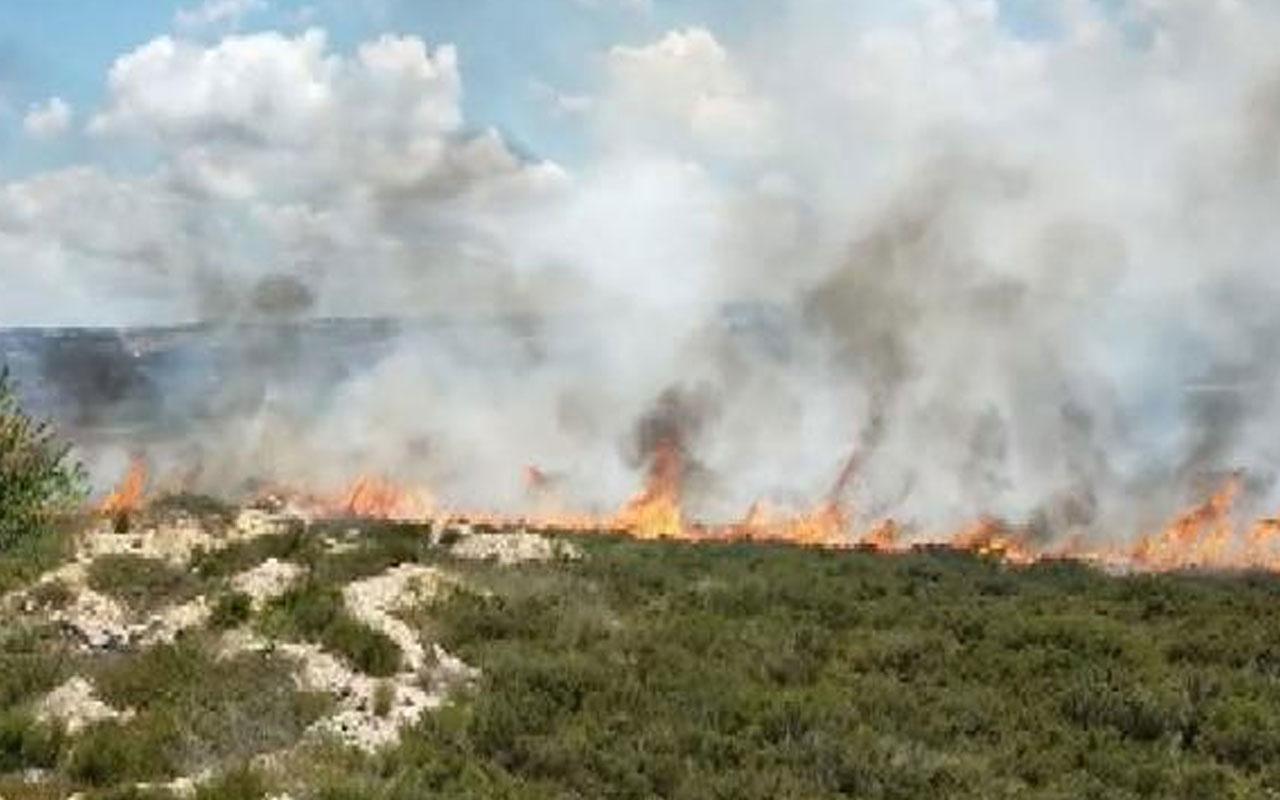 Tuzla'da otluk alanda yangın