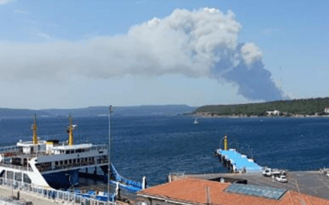 Çanakkale'de orman yangını çıktı! Alevlere müdahale ediliyor
