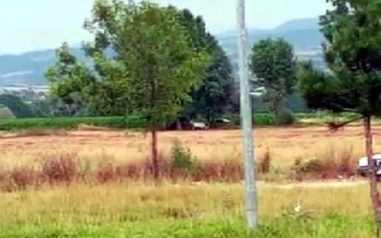 Bolu'da ata cinsel saldırıda bulunurken yakalandı
