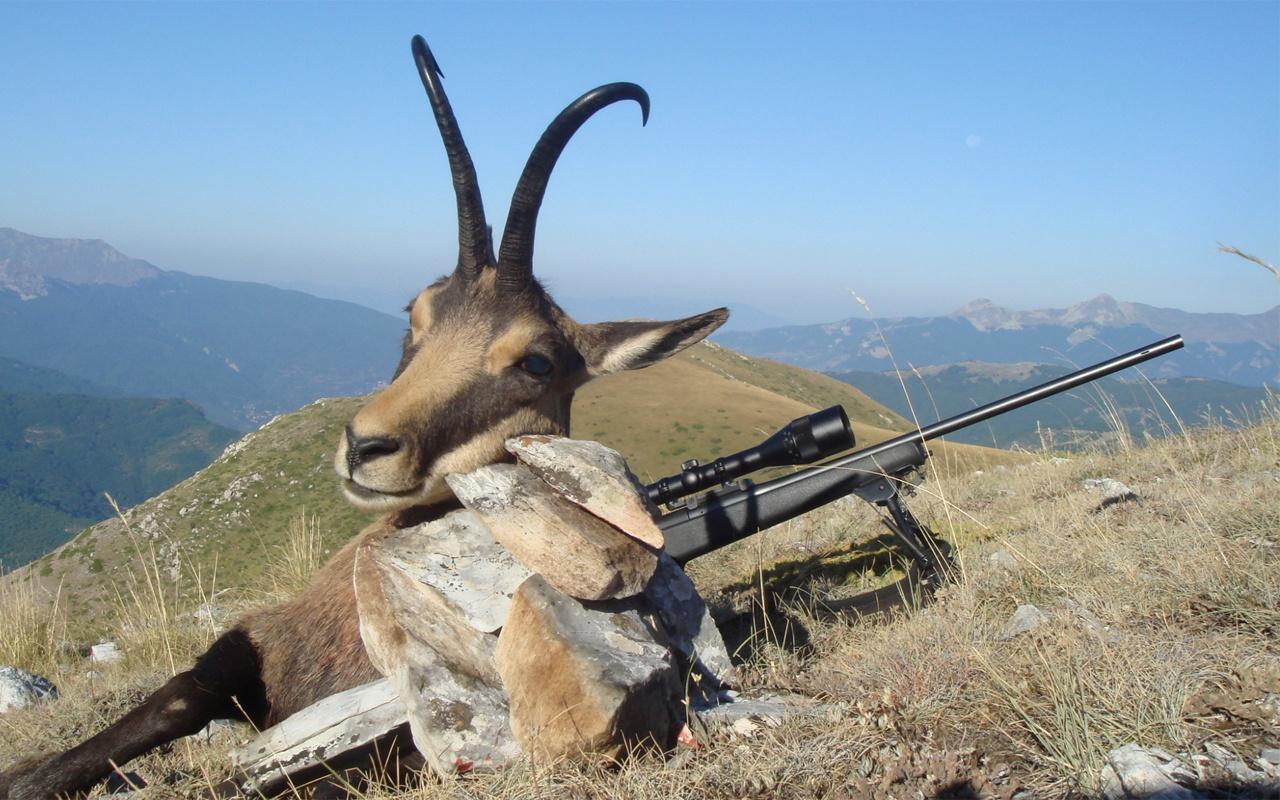 Dağ keçisi avlama ihalesinden sonra 203 liraya avcılık kursu