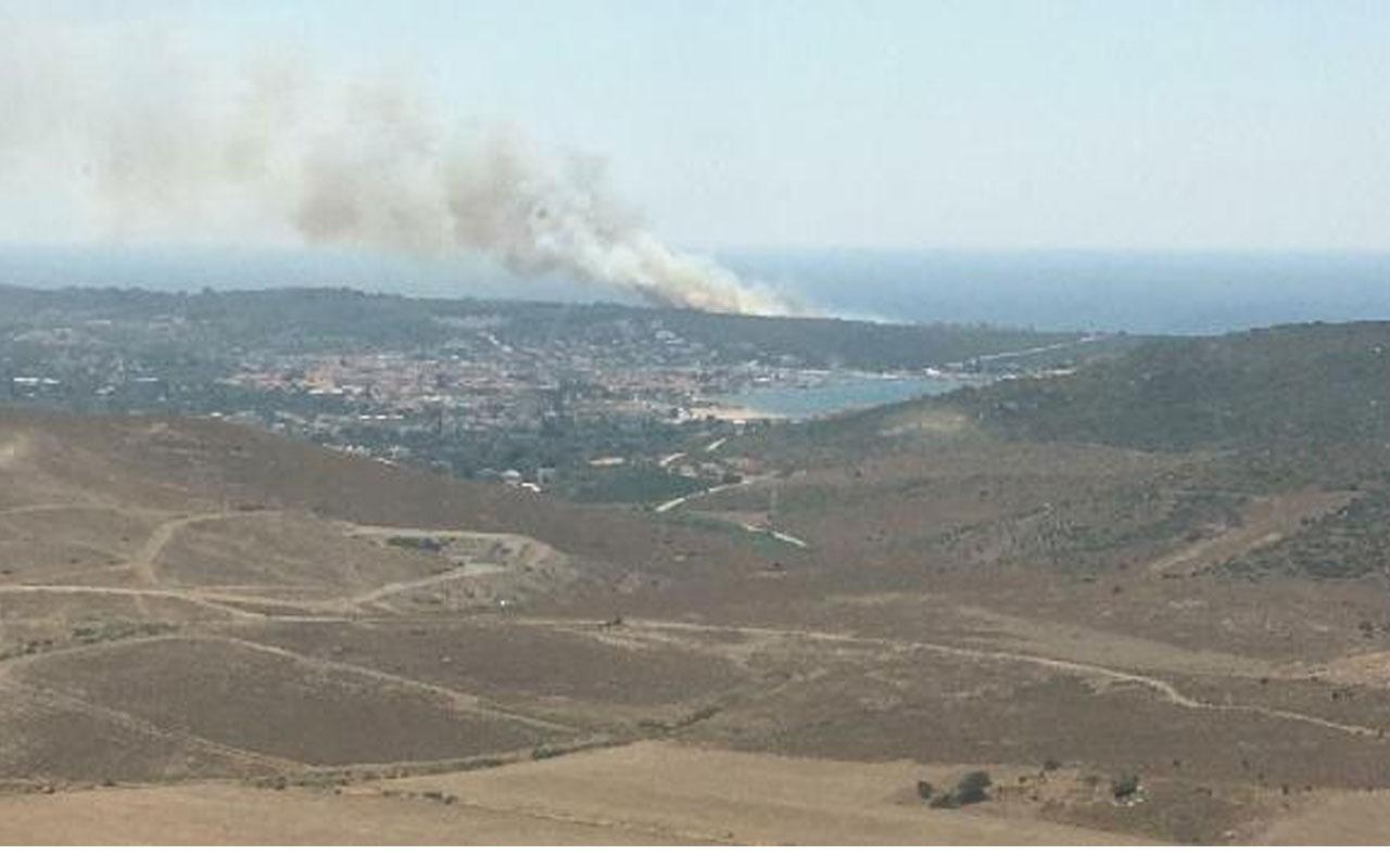 İzmir Sığacık koyunda yangın çıktı!