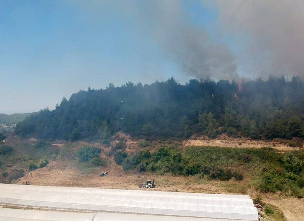 Antalya'da orman yangını! Yangında 1.5 hektarlık alan zarar gördü