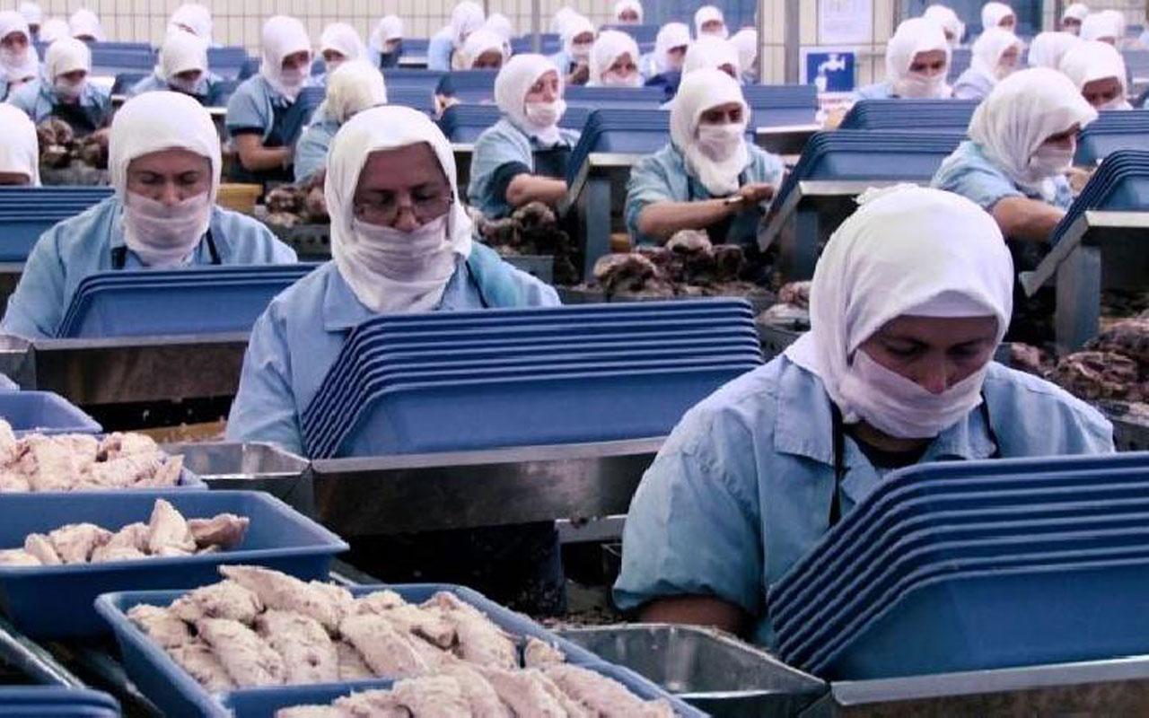 Türkiye'nin gıda devi Dardanel'in fabrikasında 14 günlük korona karantinası