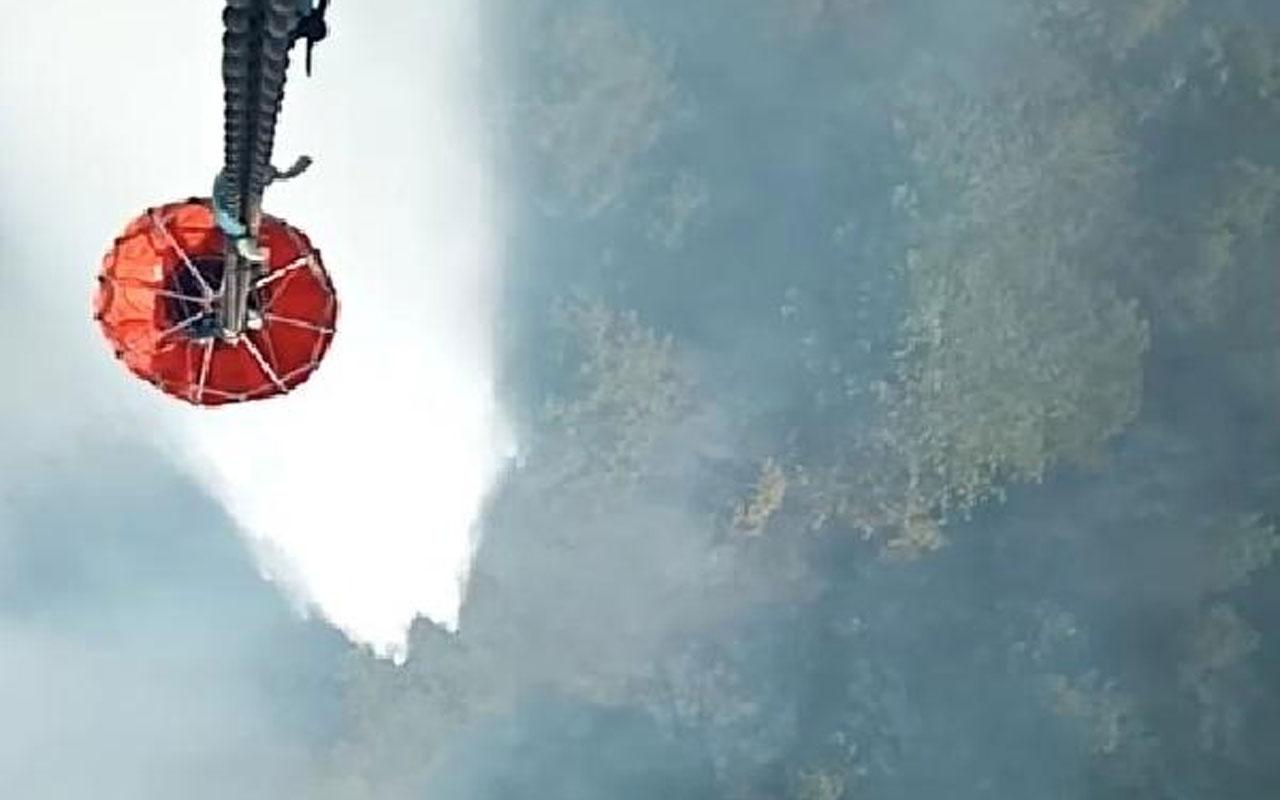 Bursa'da orman yangını! Müdahale sürüyor
