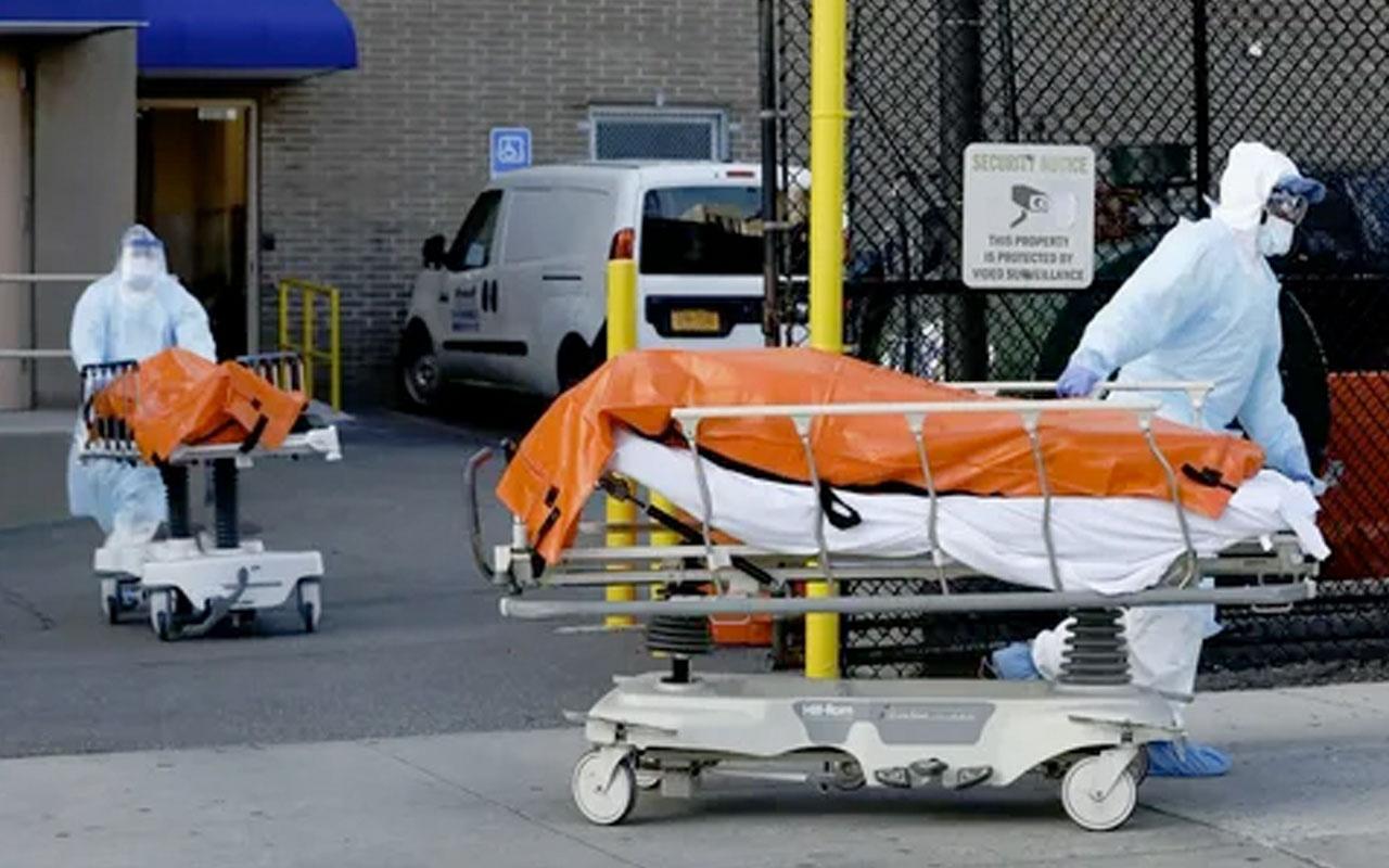 ABD'de yaşayan Türk doktordan dehşete düşüren itiraf: Ölümlerine karar verdik