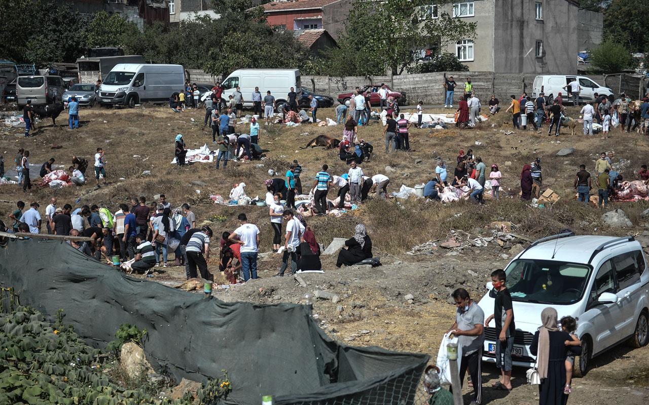 Kaçak kurban kesimi korona da dinlemedi! İzmir ve İstanbul'da her yer kaçak kesim