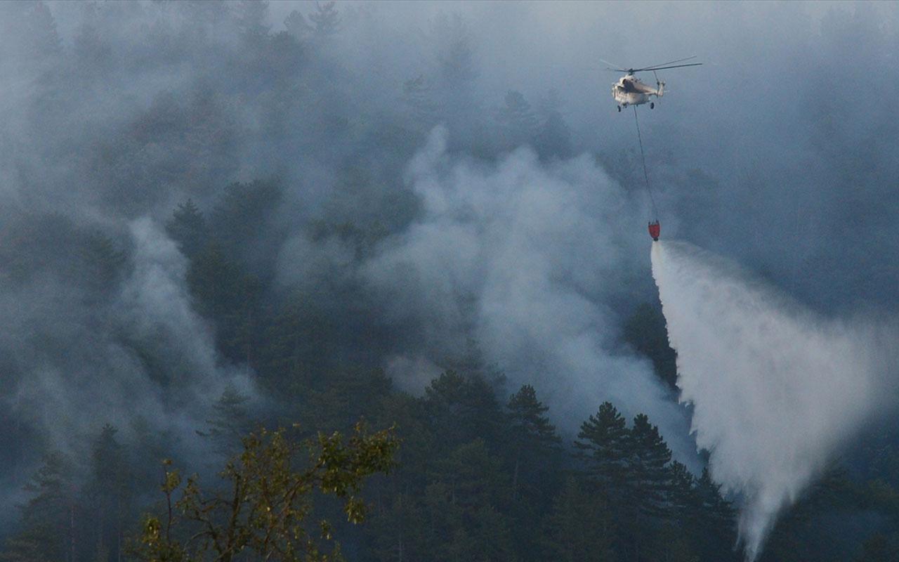 Çanakkale'deki orman yangını 19 saat sonra kontrol altına alındı