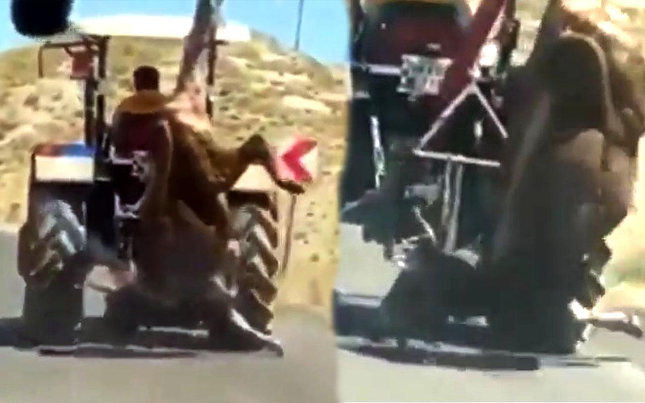 Sivas'ta olay görüntü! Kestiği kurbanlık ineği traktörün arkasında böyle götürdü