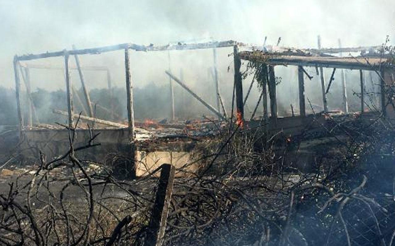 Antalya'da korku dolu dakikalar! Hamamda başlayan yangın ağaçlık alana sıçradı