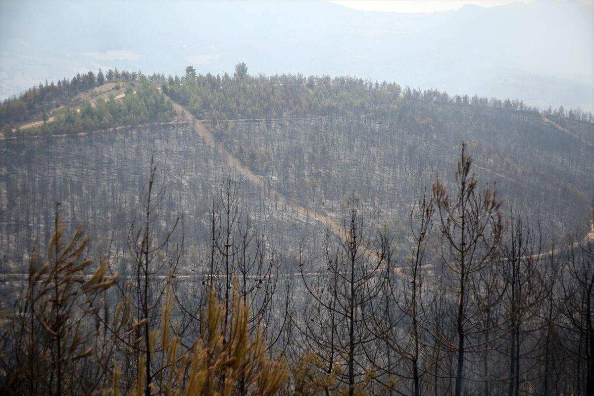 Adana Kozan'daki yangın tam 36 saattir söndürülemedi!