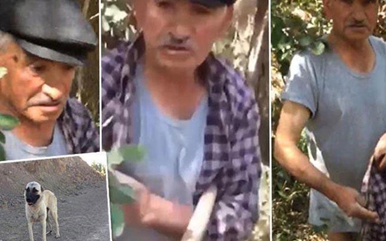Sivas'ta köpeğe tecavüz ederken yakalandı! O anlar kameraya yansıdı