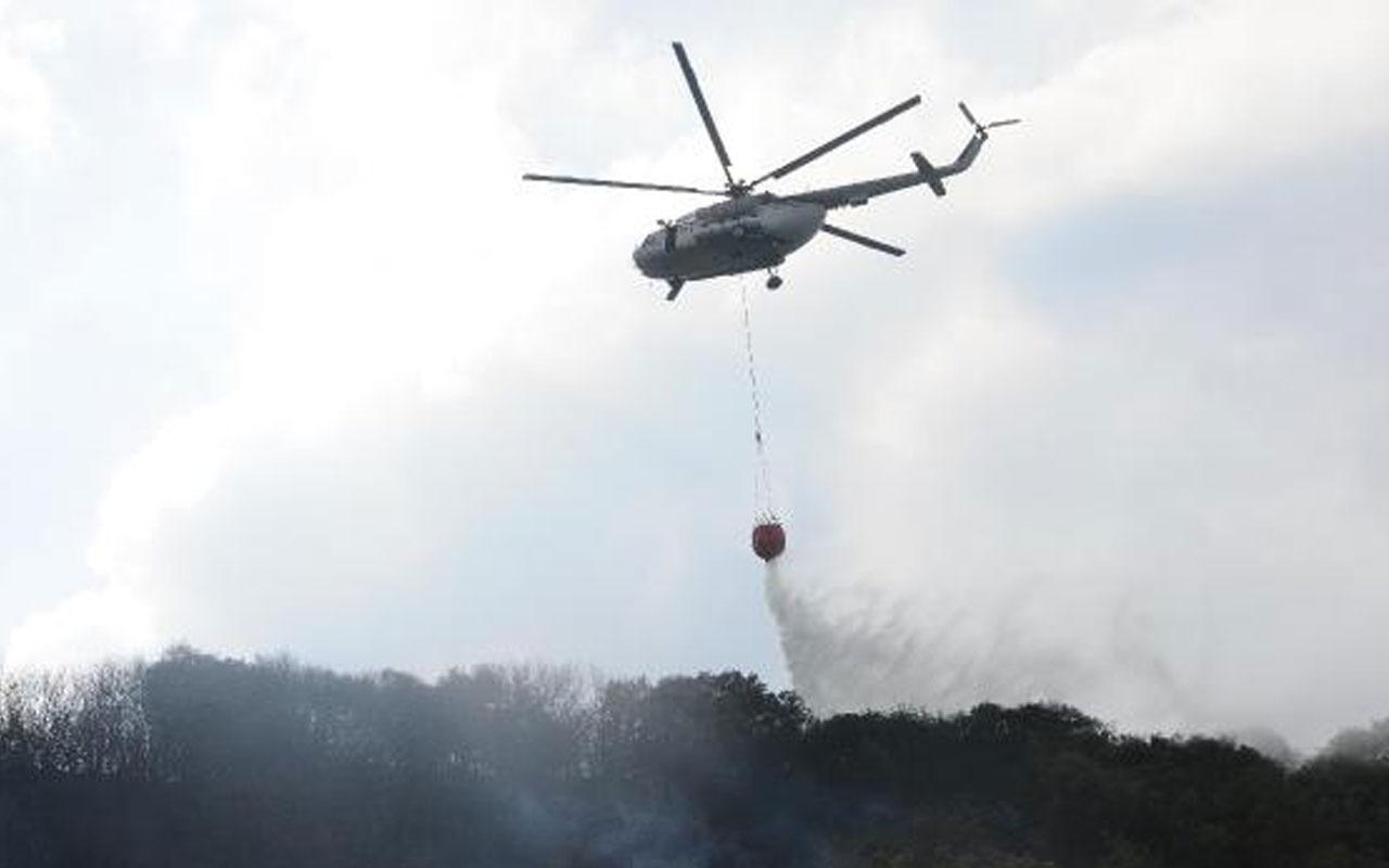 Kocaeli'deki orman yangını şüphelisi: Yere düşen çakmağın sıcaktan patlamasıyla yangın çıktı