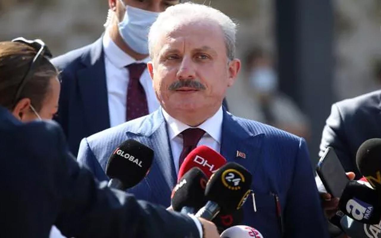 Meclis Başkanı Mustafa Şentop'tan 'sabotaj' açıklaması: Devletimiz yakılan bir dalın dahi hesabını sorar