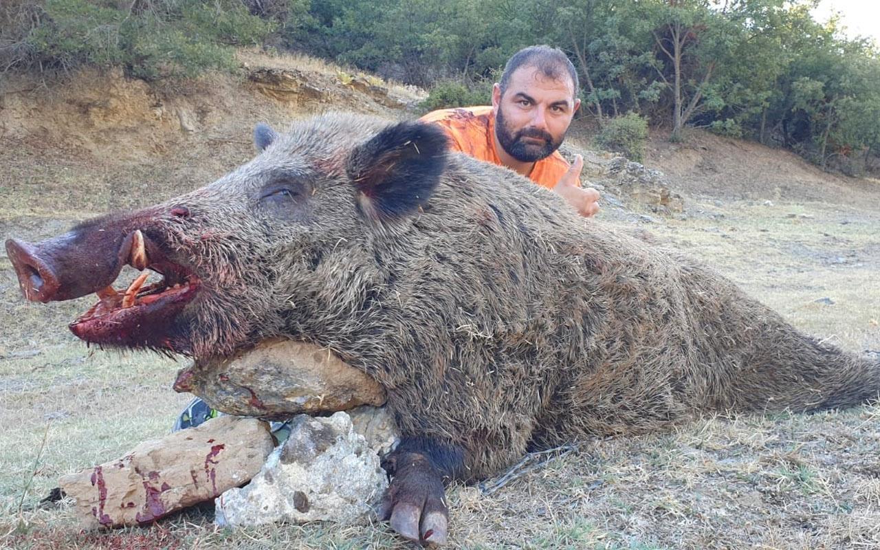 Denizli'de tarlaları talan eden domuzun yakalanma anları kameraya yansıdı