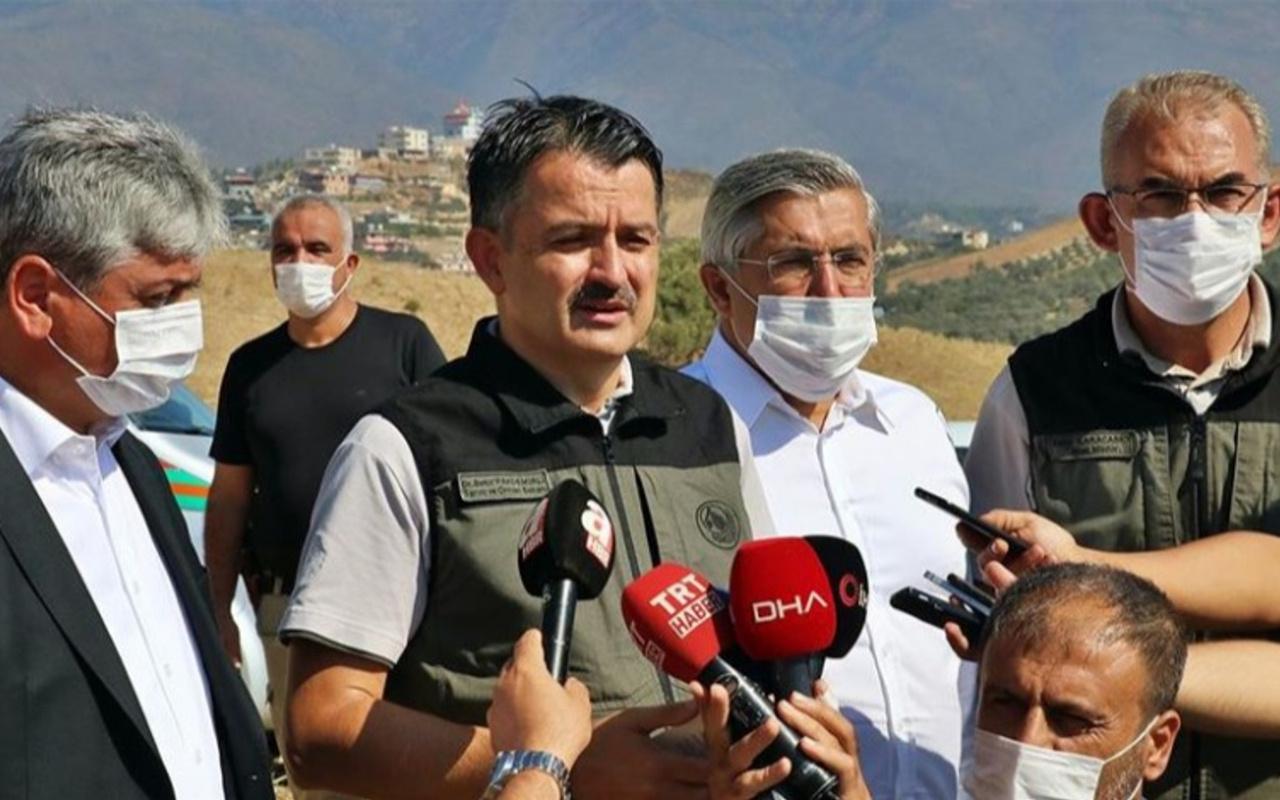 Bakan Pakdemirli: Hatay'daki orman yangını 93 saat sonra kontrol altına alındı
