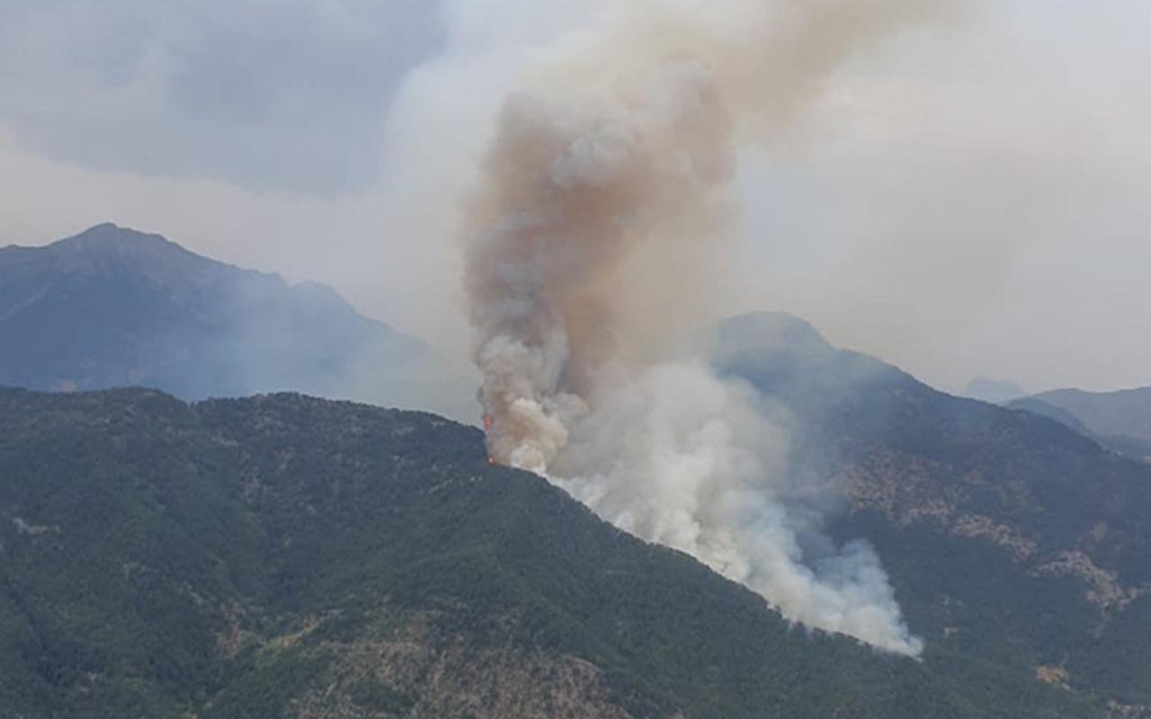 Osmaniye'de orman yangını! Alev alev yanıyor