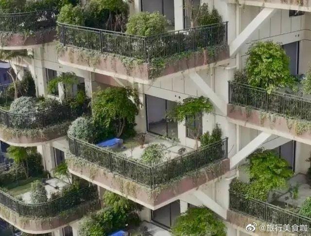 Orman apartmanı yaptılar ekolojik cennet hayali tam bir felakete dönüştü