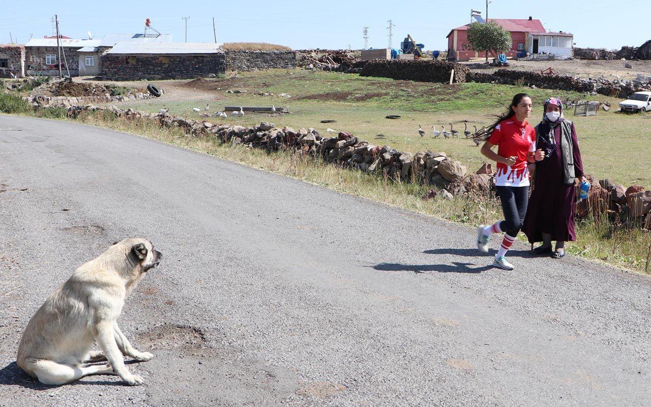 Ardahanlı sporcunun yeni başarı hikayesi hazır: Koşarken köpeklerden annesi koruyor
