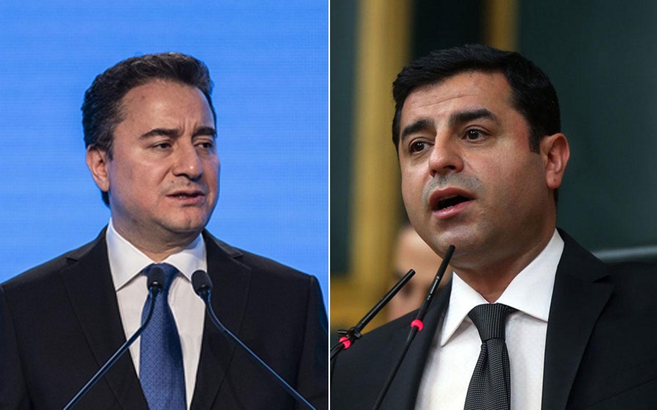 Ali Babacan kapısını Selahattin Demirtaş'a açtı