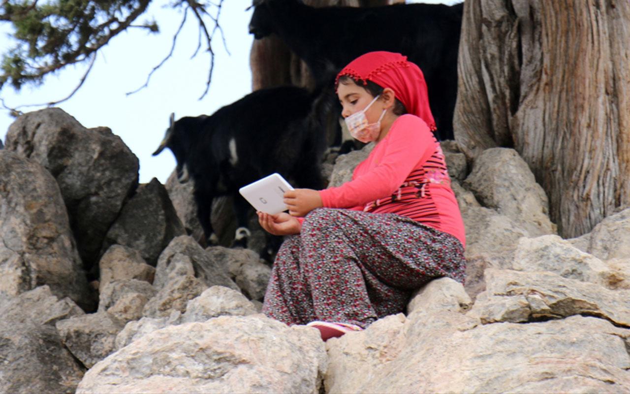 EBA'dan derslerini takip edemeyen Yörük kızı Gülsüm'e tablet
