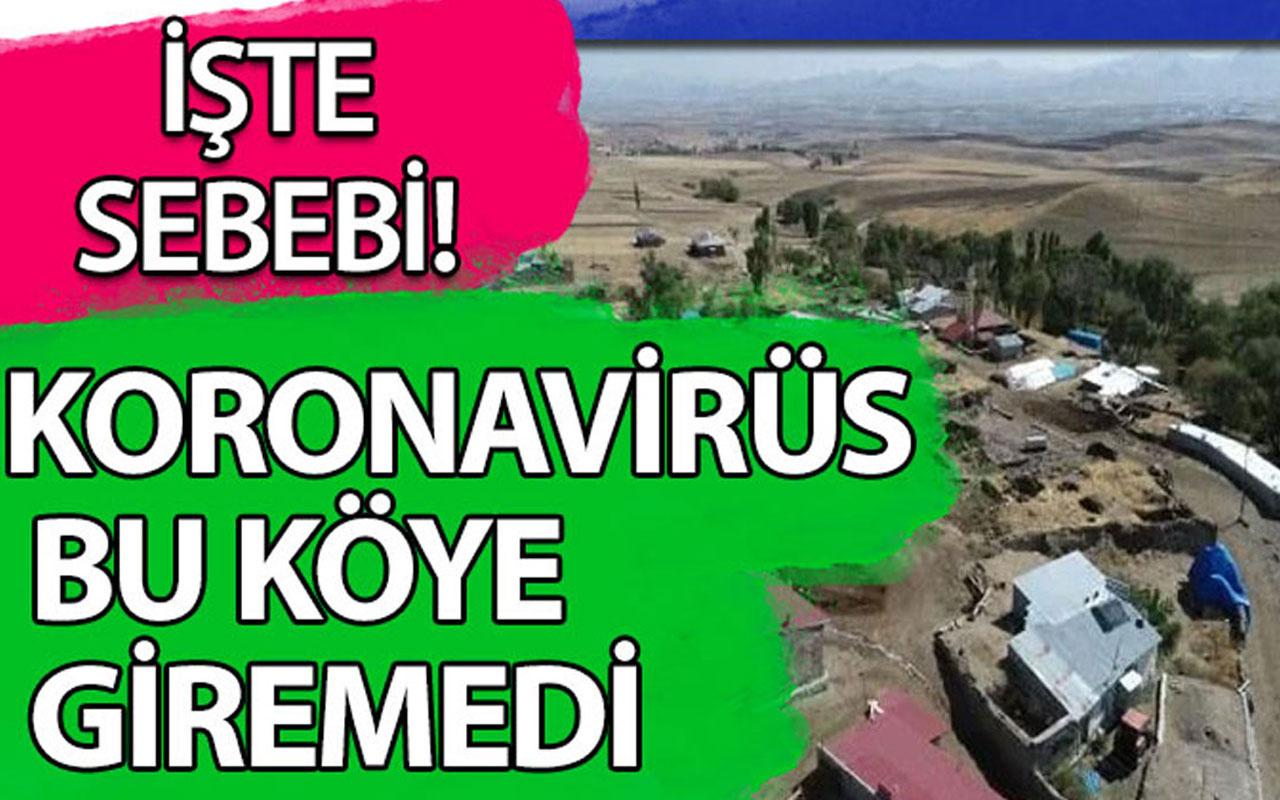 Koronavirüs bu köye giremedi, işte nedeni!