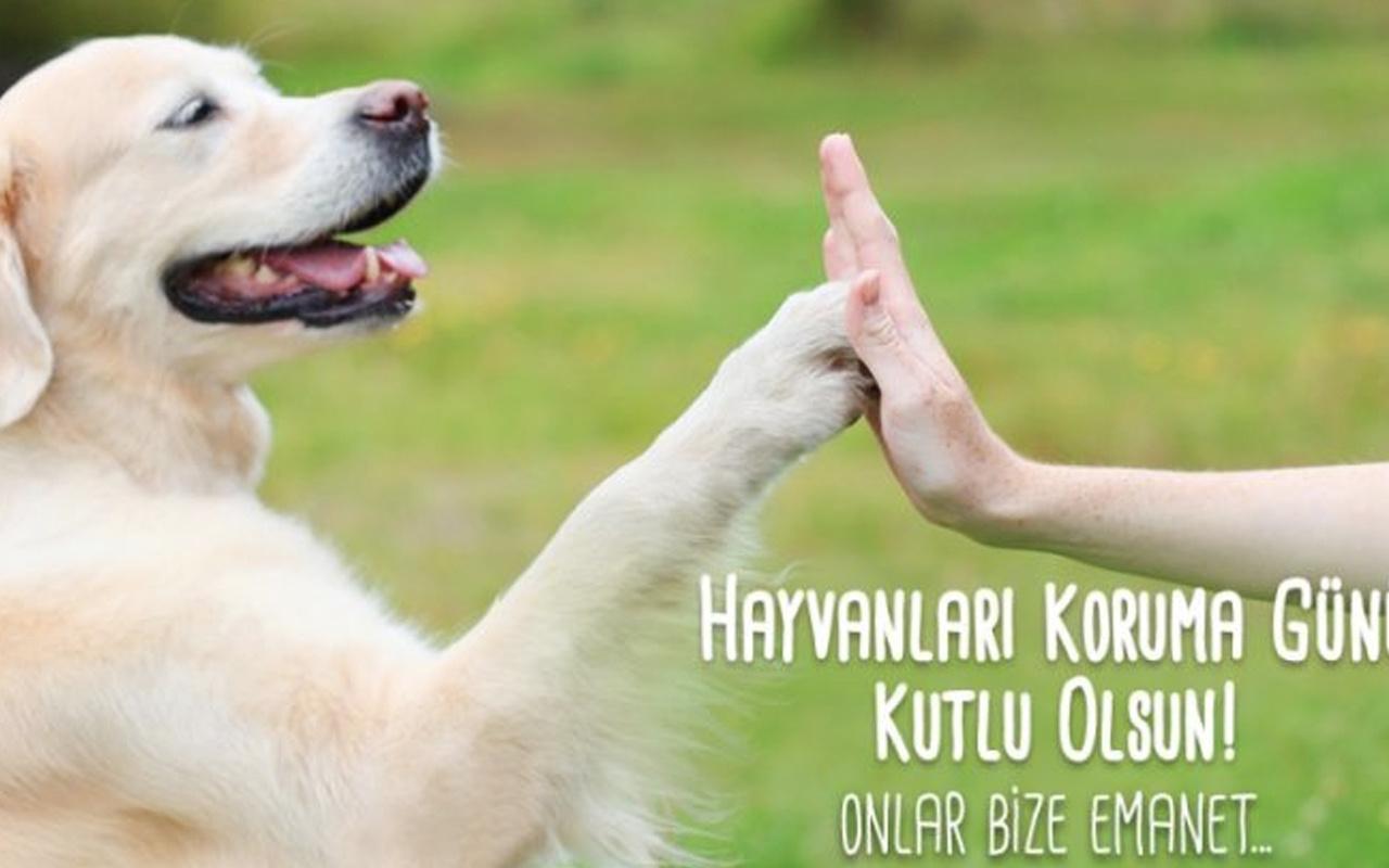 4 Ekim Hayvanları Koruma günü mesajları ve sözleri