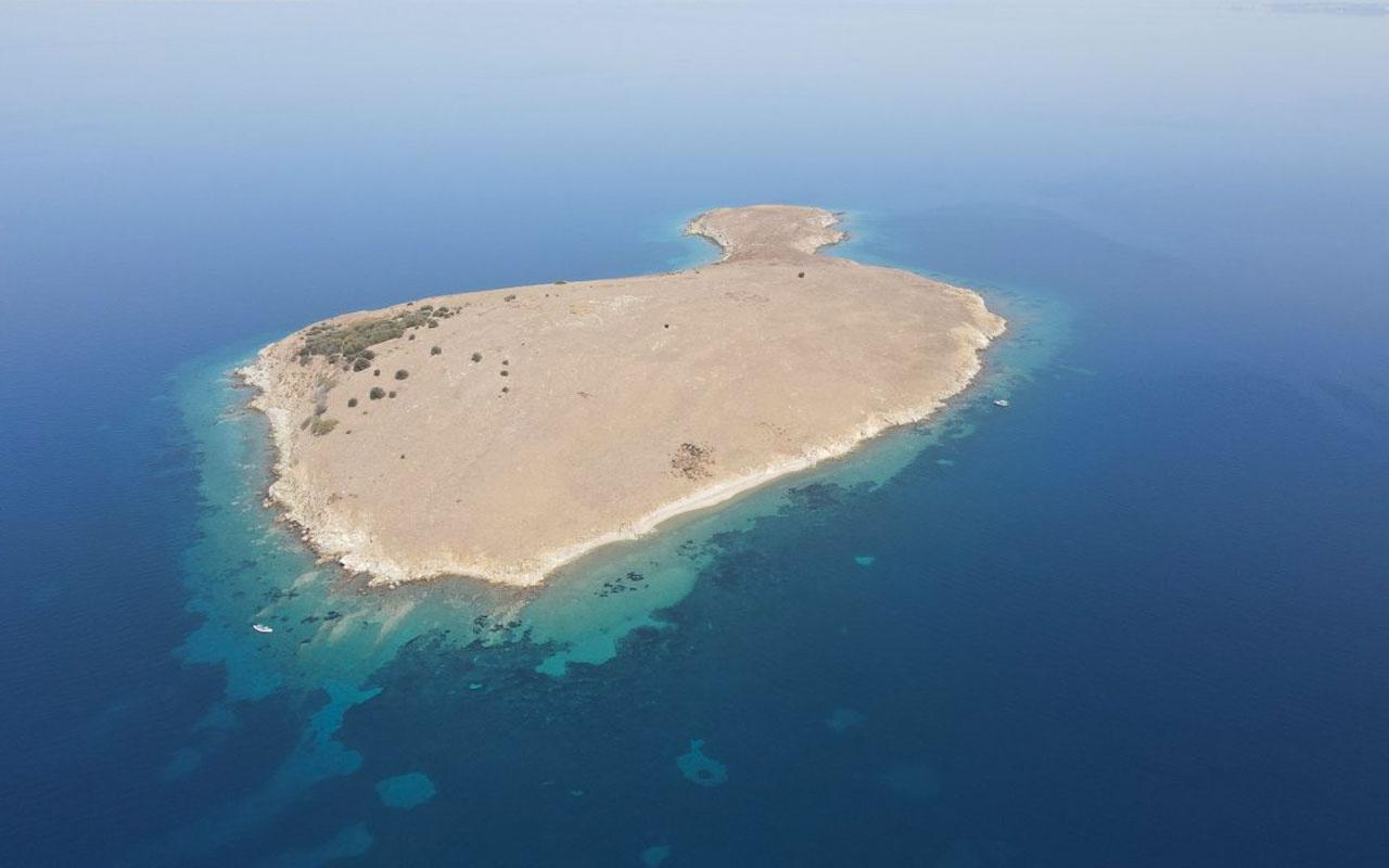 Ayvalık'taki Kız Adası 'kesin korunacak hassas alan' ilan edildi Erdoğan'a teşekkür ettiler