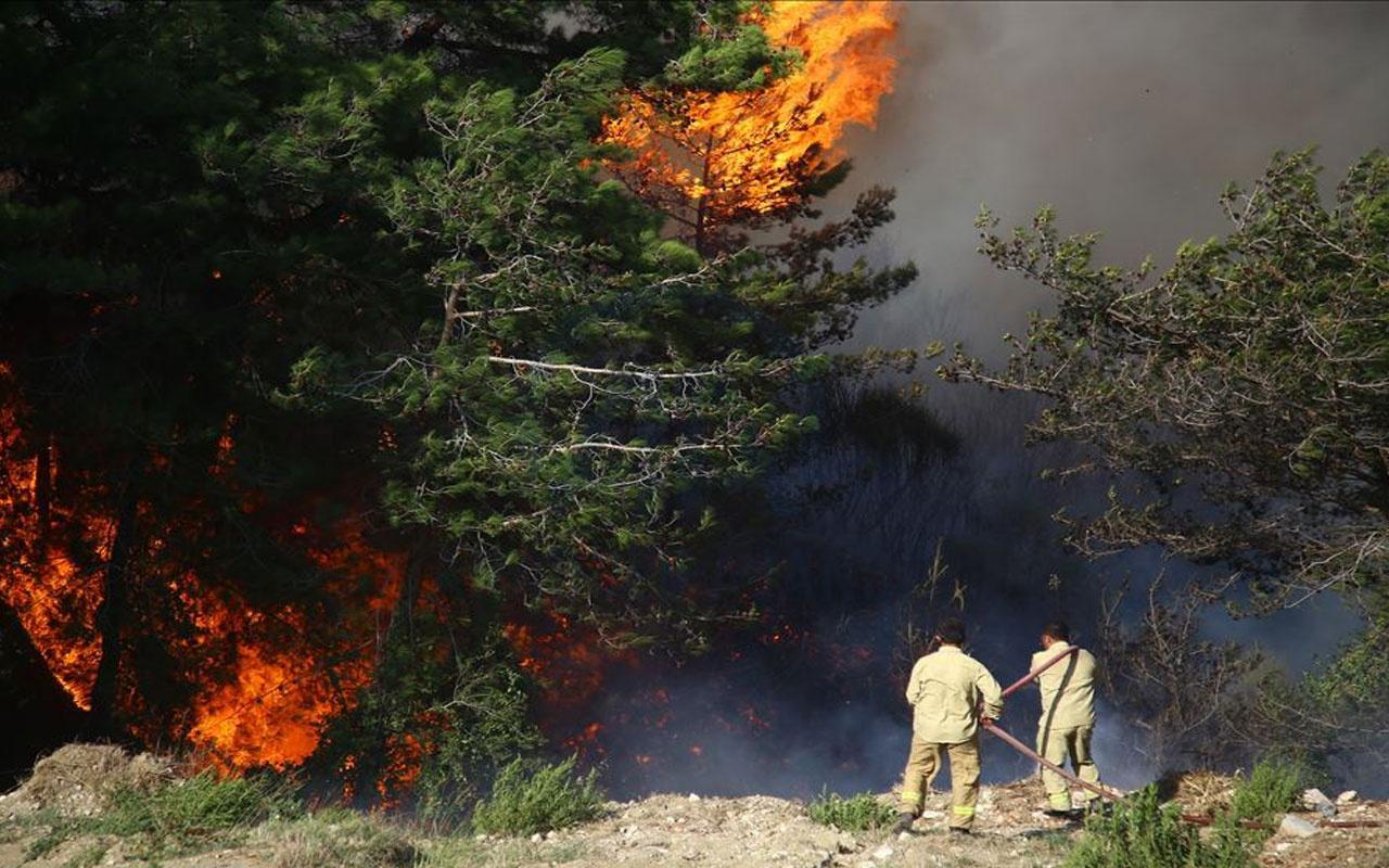 Orman yangınlarında son durum kötü haberler peş peşe geliyor