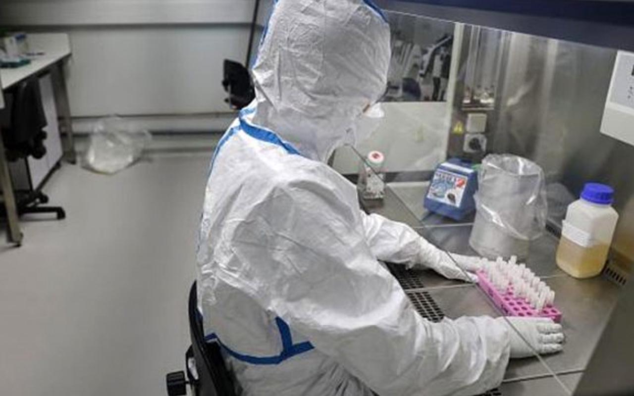 Koronavirüsle ilgili tüyler ürperten araştırma! Cam yüzeylerde ve banknotlarda 28 gün kalıyor