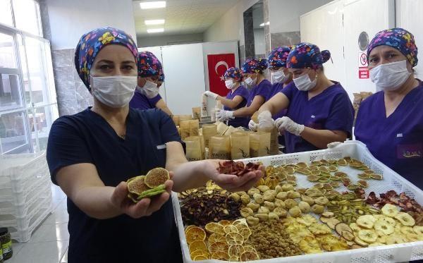 Aydın'da 3 kilo ile başladı şimdi 1,5 ton üretiyor siparişlere yetişemiyor
