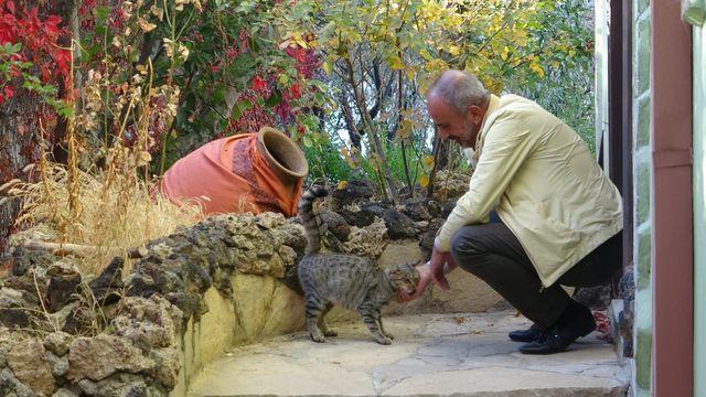 Van Edremit'te küpün içinden çıkanları gören adam şaşkına döndü