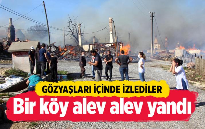Bolu'nun Kuzfındık köyünde yangın çıktı! Alevler evlere sıçradı