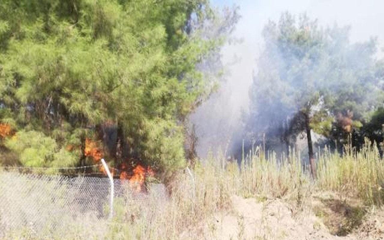Hatay'daki orman yangını kontrol altına alındı! 2 hektar ormanlık alan zarar gördü